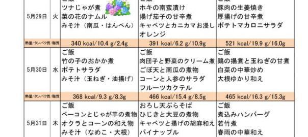 H300527のサムネイル
